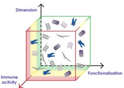 Nanoimmunity-by-design